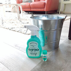 ハッカ油/すっきり/虫除け/ウタマロ/床掃除/生活の知恵/... 最近は床掃除はブラーバにお願いする事が多…