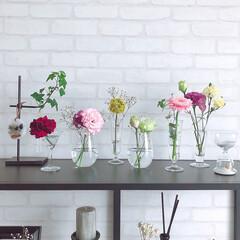 暮らしを楽しむ/カフェ風インテリア/ホワイトインテリア/北欧モダン/花の飾り方/活用術/... お花の飾り方。 ブーケ作れない人のために…