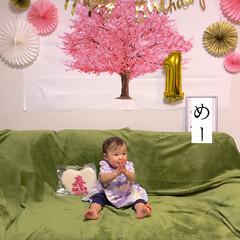 壁に貼れる桜の木/桜タペストリー/ひな祭り/1歳誕生日/飾り付け/バースデーフォト/... 少し遡りますが、3/2 ・ 今年は次女の…(2枚目)