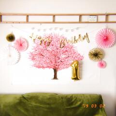 壁に貼れる桜の木/桜タペストリー/ひな祭り/1歳誕生日/飾り付け/バースデーフォト/... 少し遡りますが、3/2 ・ 今年は次女の…
