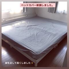 こどものいる暮らし/ベッド/セミダブル2台分/ファミリーサイズ/ベッドカバー/寝室/... そういえば!増税前に買ったもの。 (でも…(1枚目)