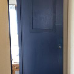 アイアンペイント アイアンブラック(その他塗料、塗装剤)を使ったクチコミ「少し前のDIYの話。 寝室のドアをペイン…」(6枚目)