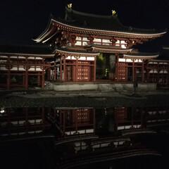 風景/おでかけ 昨夜、宇治の平等院ライトアップ見に行って…(2枚目)