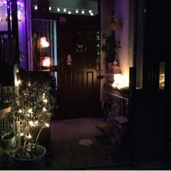 クリスマス/住まい イルミ今日からライトアップです。(1枚目)
