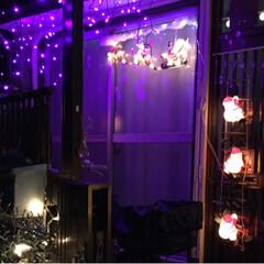 クリスマス/住まい イルミ今日からライトアップです。(2枚目)