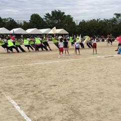 区民体育祭 今日は、学区民体育祭です、町内から、綱引…