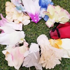 ドレス/1/12サイズ/ドール服/プチブライス/ハンドメイド/わたしの手作り プチブライスの、小さくて可愛いドレスを作…
