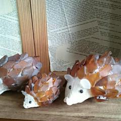 貝殻/ハリネズミ/シーグラス シーグラスと貝殻でハリネズミ。