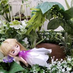 妖精の森/妖精/プチブライス/ドールハウス/わたしの手作り 1/12サイズの、草花に囲まれた妖精の森…