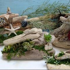流木オブジェ/流木グリーン/流木インテリア/流木/ハンドメイド 流木シリーズ♪ 色んな形の流木を組み合わ…