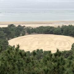 銭形砂絵/香川県/旅/風景/おでかけ 香川県の銭形砂絵。絶景でした。
