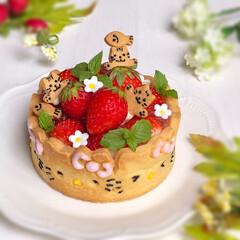 レアチーズと苺のタルト/手作りケーキ/手作りスイーツ/ひょっこりにゃん/ひょっこり/キティちゃん/... 絶望的に可愛いタルト キティちゃんver…