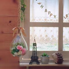 雑貨だいすき/窓枠DIY/ハリネズミ/フェイクグリーン/ハンギングガラスポット/エッフェル塔 窓辺の雑貨🗼  松ぼっくりの実でできた …