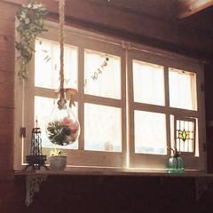 ステンドグラス/フェイクグリーン/窓枠DIY/ハンギングガラスポット