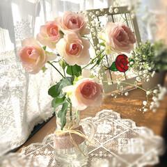 花のある生活/かすみ草/薔薇/雑貨 スーパーの切り花🌸コーナーで 淡いピンク…