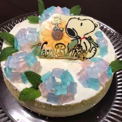 あじさい/スヌーピー/コナン/ケーキ/誕生日/雨季ウキフォト投稿キャンペーン 我が家のkidsは、誕生日が1ヶ月違いで…