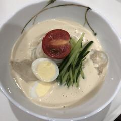 冷たい/麺/豆乳/韓国料理/グルメ/フード/... コングクスという冷たい豆乳麺。韓国では夏…
