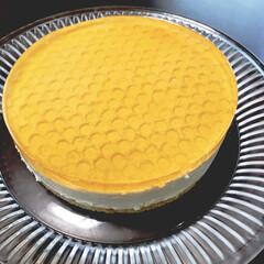 レアチーズケーキ/はちみつ/ホームメイド/手作り/フード/スイーツ 娘のお友達が遊びにくるので、ハチの巣レア…