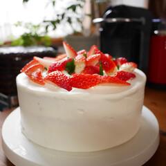 苺のケーキ/クリスマスケーキ/クリスマス/ホームメイド あまりのイチゴの高騰にビックリしたけど、…