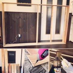観葉植物 柱サボテン8号+バスケット鉢カバー(観葉植物)を使ったクチコミ「去年作った、キャットウォーク付きの窓枠で…」(2枚目)