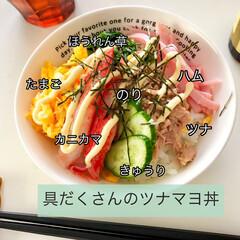 簡単レシピ/どんぶり/丼物/マヨネーズ/ツナマヨ丼/おうちごはん 息子のリクエストで作ったツナマヨ丼。 具…