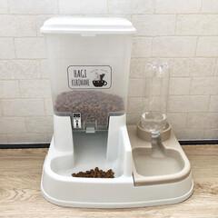 ペット用自動給餌器/アイリスオーヤマ/猫用品/猫と暮らす/ペットグッズ/ペット用品/... やんちゃな飼い猫が、エサやお水をお皿ごと…