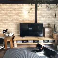 猫スペース/猫トイレ/猫コーナー/レンガ風壁紙/レンガ棚/元和室/... 先週、引っ越しをしました🚛📦 今のリビン…