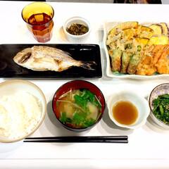 天ぷら/焼き魚/和食/晩ごはん/おうちごはん/ごはん 和食メニューの晩ごはんです🍽🎵 焼き魚と…(1枚目)