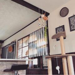 カフェ風インテリア/モノトーンインテリア/グレー/サンシェード/夏インテリア/インテリア/... 西日対策に、ダイニングの窓にセリアのウイ…