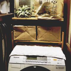 ブログ更新しました/洗面所DIY/洗濯機上収納/洗濯機周り/パレットDIY/フォロー大歓迎/... 日曜日はパレットで洗濯機上の棚を作りまし…