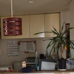 渋カフェ/お金をかけない/廃材利用/パレットDIY/キッチン棚/インテリア/... 2016年5月まで、我が家はこんな風でし…
