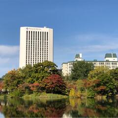 ダリア/お花/中島公園/札幌/朱色/フォロー大歓迎 札幌の娘からの便りです。 中島公園に行っ…