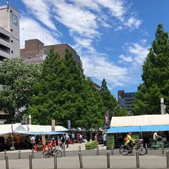 陶器市/晴天/大通り公園/令和元年フォト投稿キャンペーン/フォロー大歓迎/LIMIAファンクラブ/... 横浜大通り公園の大陶器市へ行ってきました…