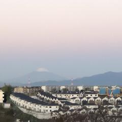 わんこ大好き/パン🥖/まりんのシャンプー/朝の富士山🗻 おはようございます。 昨日の朝の富士山🗻…(1枚目)