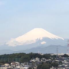 あ散歩/富士山🗻 あ散歩で事故を見た後は、 気分直しに富士…