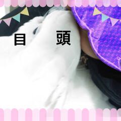 インコ/横浜PET博 11日の土曜日に横浜PET博に行ってきま…(4枚目)
