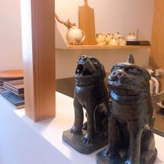 ねこと暮らす/猫との暮らし/皿 昨日信楽の古谷製陶所で買ったお皿で朝ごは…(5枚目)