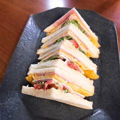 サンドイッチ/しろねこ/ねこと暮らす/ねことの暮らし サンドイッチ作ったよ〜 1枚目は中身だよ…(3枚目)