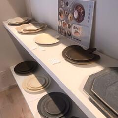 ねこと暮らす/猫との暮らし/皿 昨日信楽の古谷製陶所で買ったお皿で朝ごは…(7枚目)