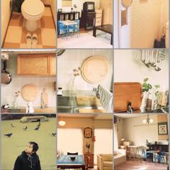 懐かしいインテリア/昔の住まい/DIY 写真の整理してたら出てきたマンションに住…