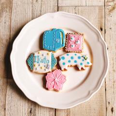 入学おめでとう/桜/春/アイシングクッキー/グルメ/フード/... 春らしいアイシングクッキーを習いました🌸…