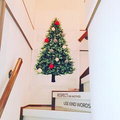 階段/セリアの毛糸/毛糸オーナメント/トーカイタペストリー/リフォーム/DIY/... おうちにもクリスマスツリー(1枚目)