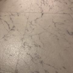 おうち自慢 洗面所の床のクッションフロアが黒ずんでい…(1枚目)