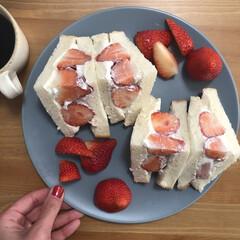 フルーツサンド/朝食/サンドウィッチ/LIMIAごはんクラブ/フォロー大歓迎/わたしのごはん/... 朝ごはんのフルーツサンド。 サンドウィッ…