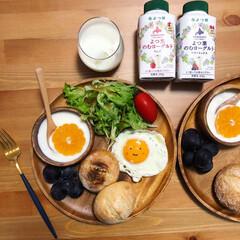 プレートごはん/朝食/朝ごはん/グルメ/フード/おうちごはん 【朝食】 よつ葉ののむヨーグルトが美味し…