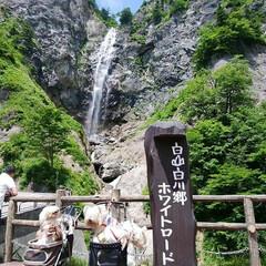 滝/ペット/おでかけ 6月24日、ワンコと旦那と私でお出かけし…(1枚目)