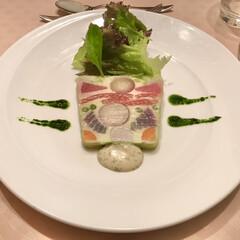 野菜/テリーヌ/シェフ/YouTube/クックパッド/おうちカフェ/... 野菜のテリーヌ 2種の香草ソース添え  …