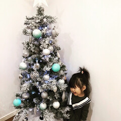 住まい クリスマスツリー
