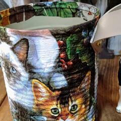 アンティーク エイジング 塗料 P-Effector ザラザラベース(ペンキ、塗料)を使ったクチコミ「リメ缶多肉植物サイズです。底穴が空いてる…」(8枚目)