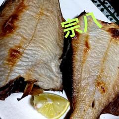 宗八/北海道/魚/おうちごはん 今夜のおすすめ🏮❕ 宗八‼️皆さん知って…